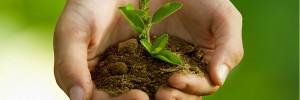 Notre dimension écologique